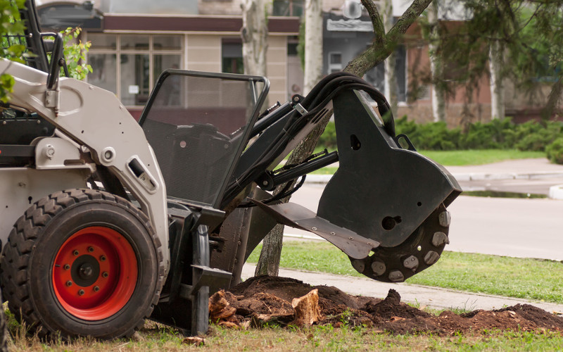 TREE STUMP REMOVAL, Tree Services